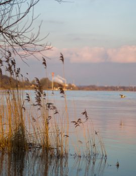 Wageningen University - Rhine river